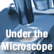 Under the Microscope – Daniel Lang